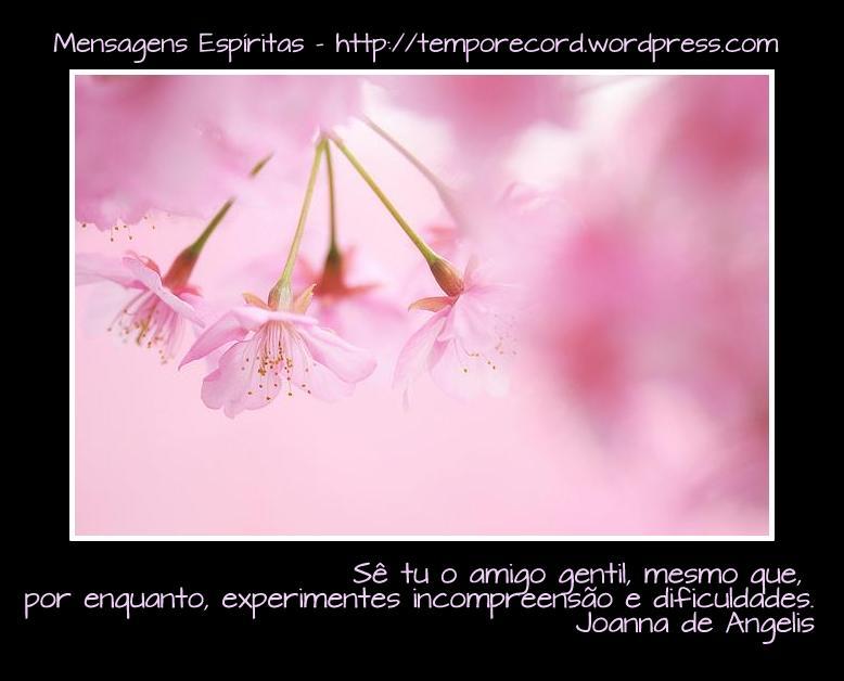 MENSGENS -IMAGENS JOANA DE ANGELIS