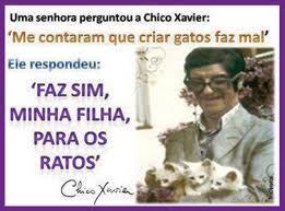chico_e_os_animais_2